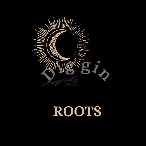 diggin roots music festival logo